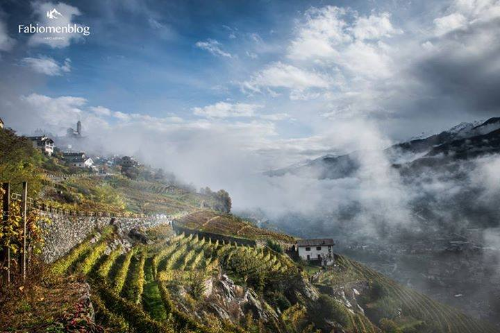 Valtellina wine holiday