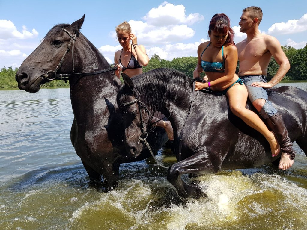 Bareback Riding with Stallions